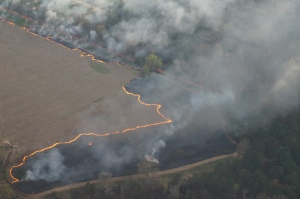 Controlled Burn from 2000 Feet up,Zoomed in
